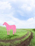草原にいる馬のイメージ