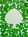 葉に囲まれた木(エコロジーイメージ)