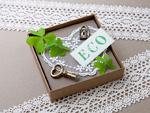 箱に入った葉と鍵とECOのカード