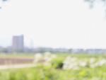 草原と町並のイメージ