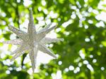 新緑と星形のオブジェ