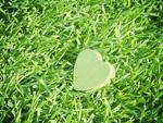 芝生とハート