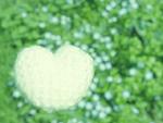花畑と毛糸のハート