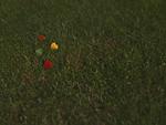 芝生に散らばるハート