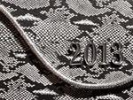 ヘビ柄の2013年イメージ