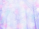 森林イメージ(CG)