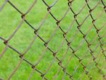 金網と芝生