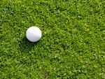 パークゴルフのボール