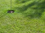 パークゴルフのグリーン