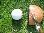 パークゴルフのボールとクラブ