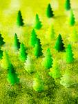 クラフトの森林