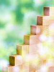 木漏れ日と木の階段