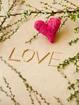 """枝に囲まれた""""LOVE""""の文字"""