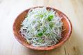 タイトル:香味野菜