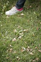 芝生とスニーカーの足元