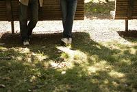 木漏れ日と男性の足