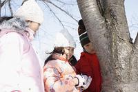 木を見つめる子供