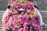 花壇越しに会話する女性