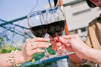 女子会でワインで乾杯する女性