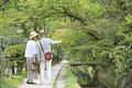 タイトル:川沿いの遊歩道を歩くシニア夫婦