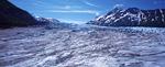 ケナイフィヨルド氷河