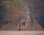 紅葉のチュイルリー公園