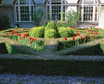 庭園の花壇