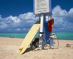 サーフボードと自転車