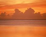 オレンジ色の海