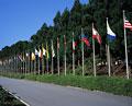 タイトル:万国旗