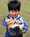 タイトル:ネコを抱く男の子
