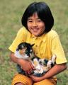 タイトル:ネコを抱く少女