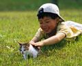 タイトル:男の子と子猫