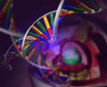 タイトル:DNAイメージ(CG)