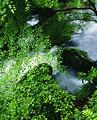 タイトル:貴船川