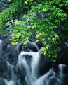 タイトル:川