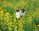 菜の花畑の親子