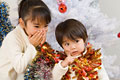 タイトル:クリスマスツリーと姉弟