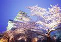 タイトル:鶴ヶ城公園