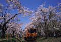 タイトル:芦野公園