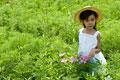 タイトル:花を見る女の子