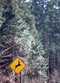 タイトル:警戒標識