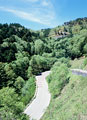 タイトル:自然の中にある道路