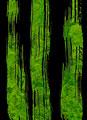 タイトル:苔さばき