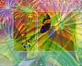 タイトル:蝶と花