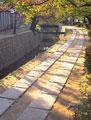 タイトル:散歩道