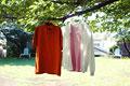 タイトル:枝にかけられた服