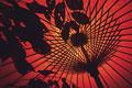 タイトル:番傘と葉