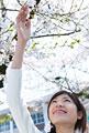 タイトル:桜と女性
