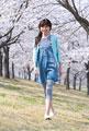タイトル:桜の花と女性